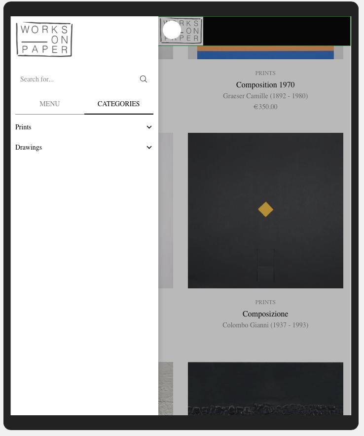 realizzazione sito web Works on paper - Emanuela Scanzani