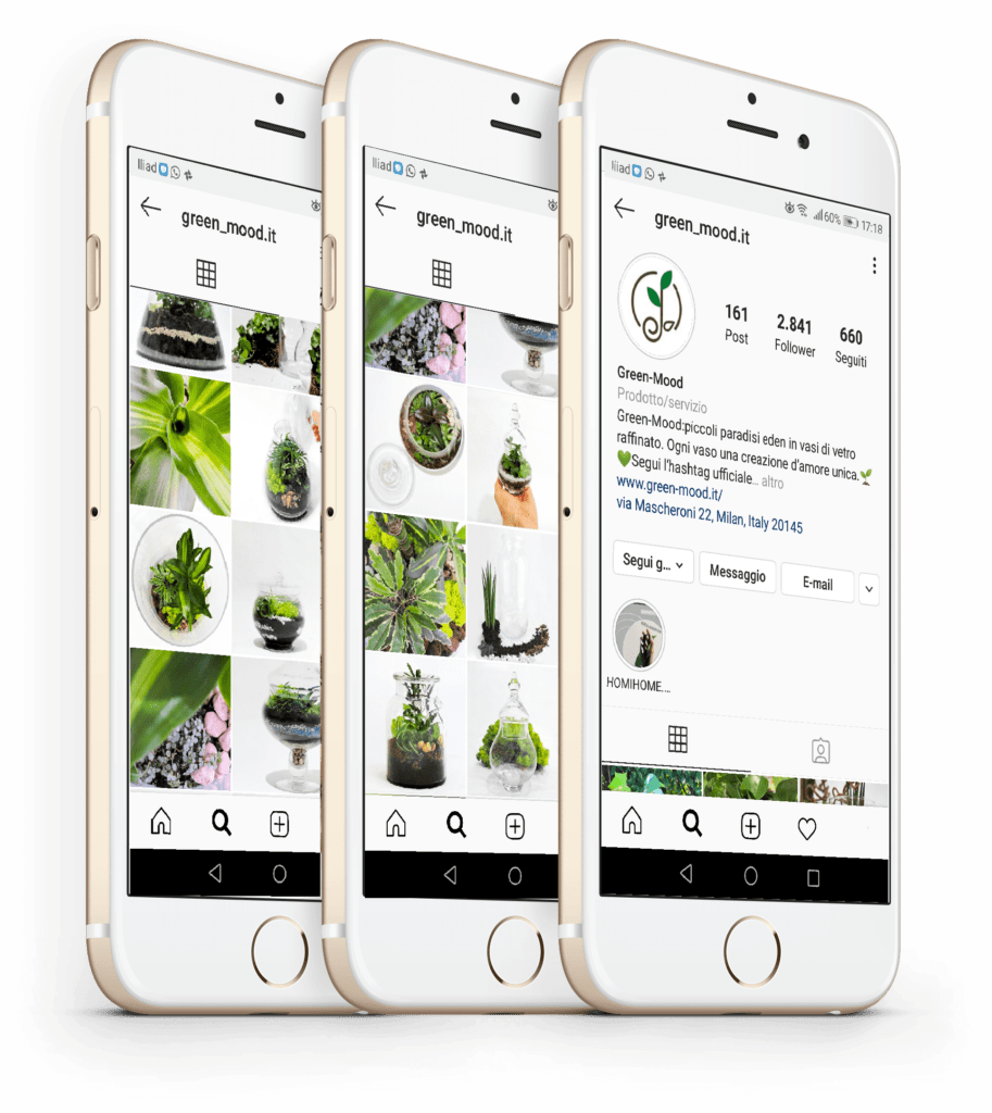 greenmood gestione profilo instagram